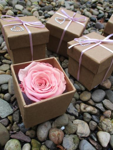 new-life-florist-gift-idea-preserved-roses